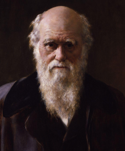 Cropped detail from Charles Robert Darwin, a painting by John Collier